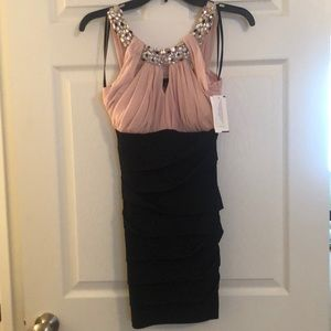NWT Beautiful pink and black dress